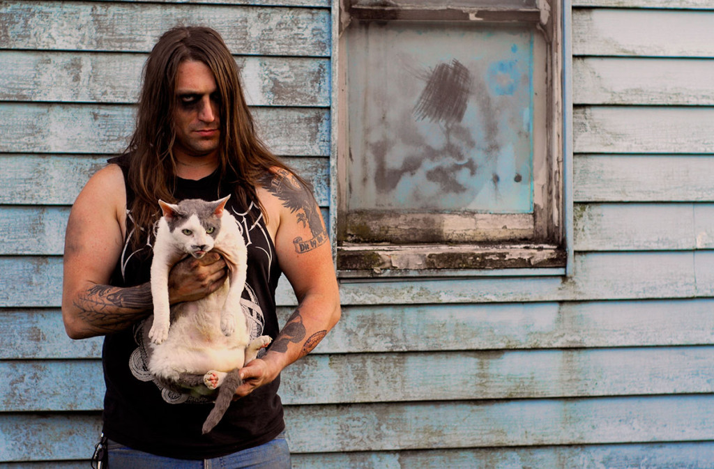 metal cats img4