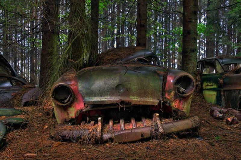 cimitero-auto-foresta-belga-010-601729