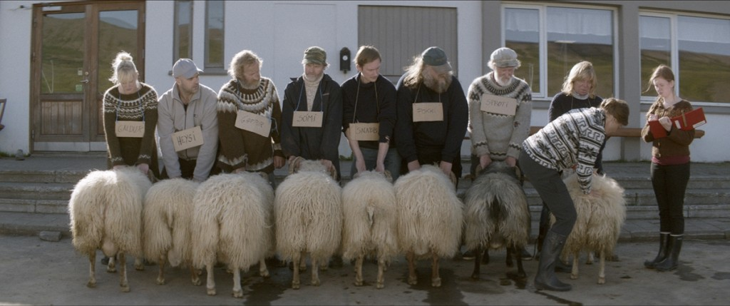 carneros rams 01