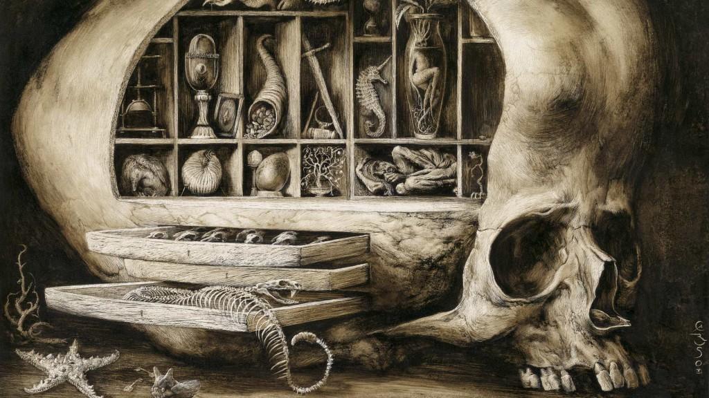 gabinete de maravillas santiago caruso
