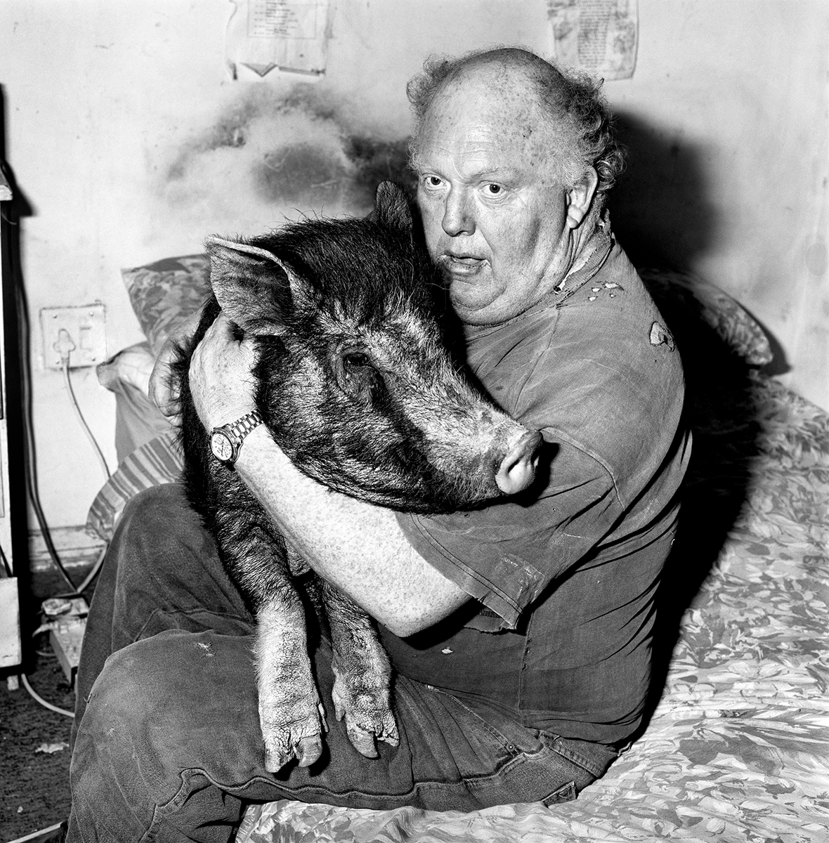 Brian with pet pig, 1998, Roger Ballen.