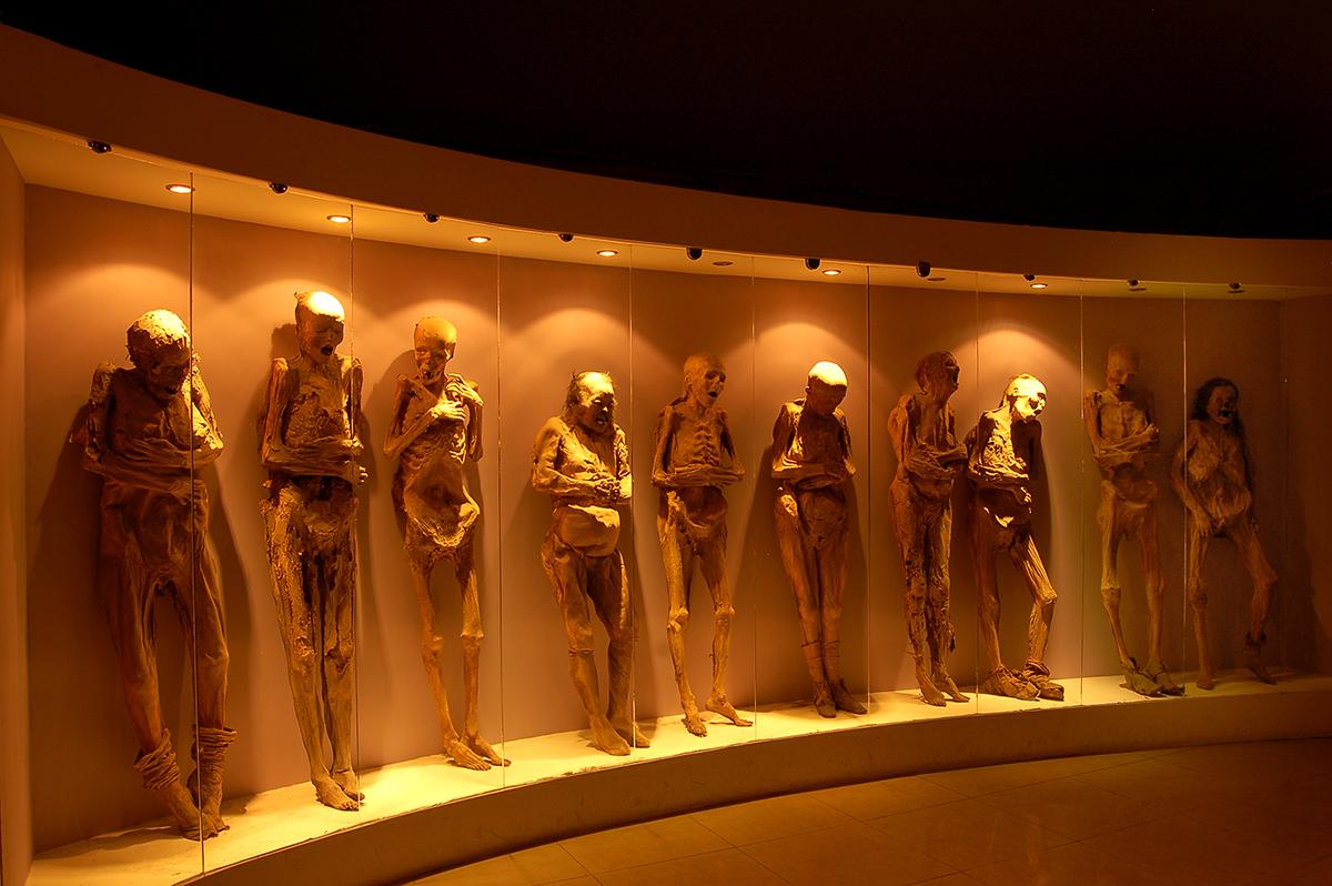 museo de las momias de fotografia