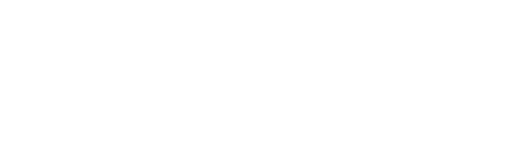 Revista Yaconic