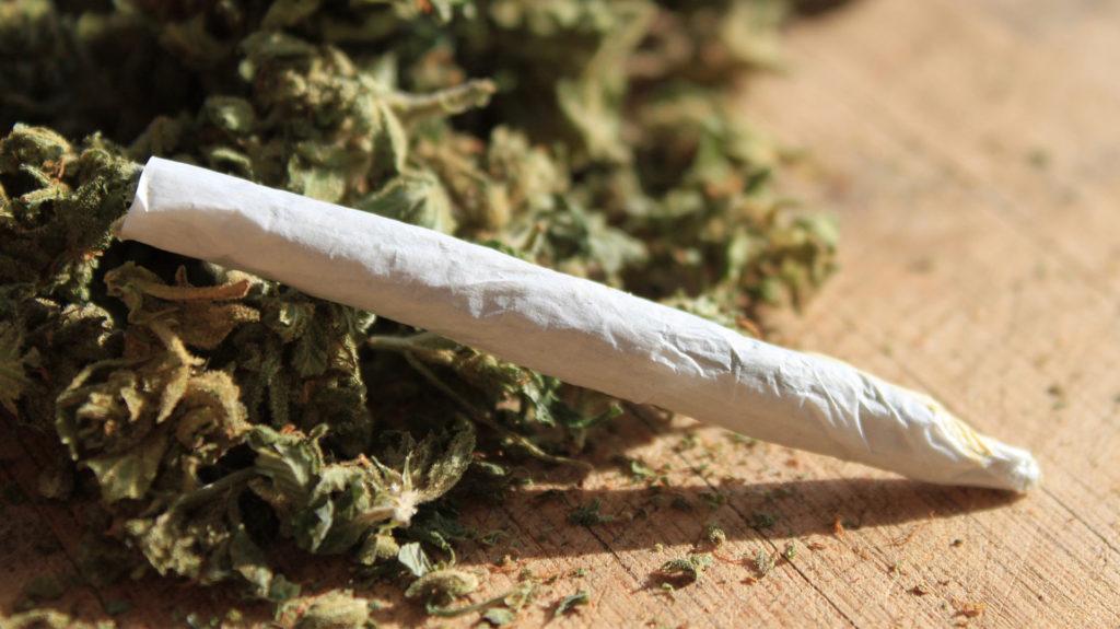 flor de caña, cigarros de marihuana, canabbis, mota, churro