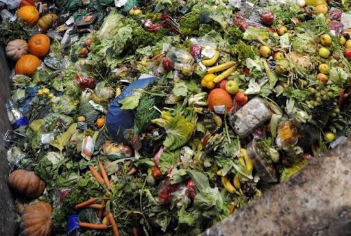 contaminación ambiental por desechos alimenticios